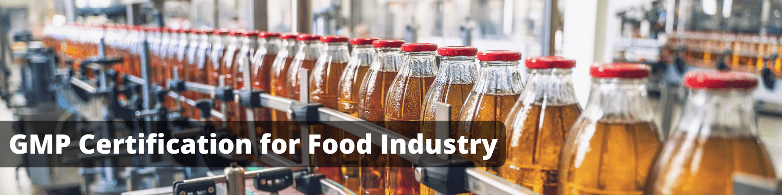GMP for Food Industry In Sri Lanka