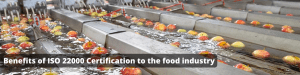 Benefits of ISO 22000 Standard to the food industry